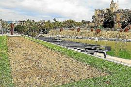 Keine Blumen in den Beeten von Palma de Mallorca