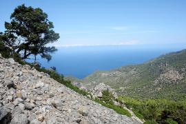 Schutz für Geröllfelder im Gebirge auf Mallorca gefordert
