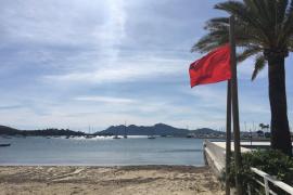 Hickhack um Strandliegen auf den Playas von Pollença