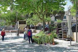 Sineu-Markt im Herzen von Mallorca öffnet wieder