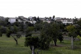 Ganztägiger Sport in diesen Ortsteilen in Palma