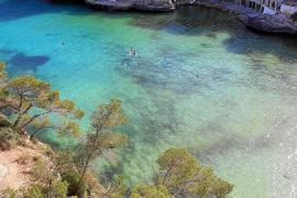Algen färben Buchten von Santanyí grün
