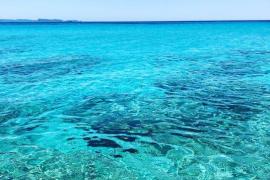 Meerwasser vor Ses Salines durchdringend blau wie selten